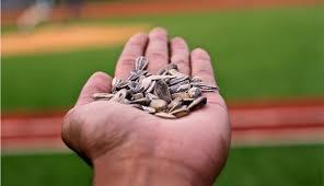 baseball seeds